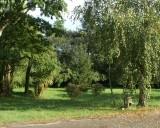 Parc-ombragé